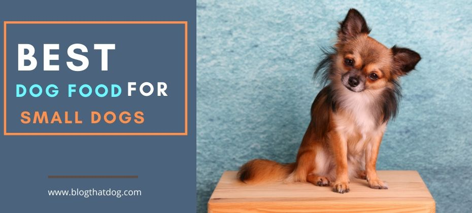 dog food for small dogs