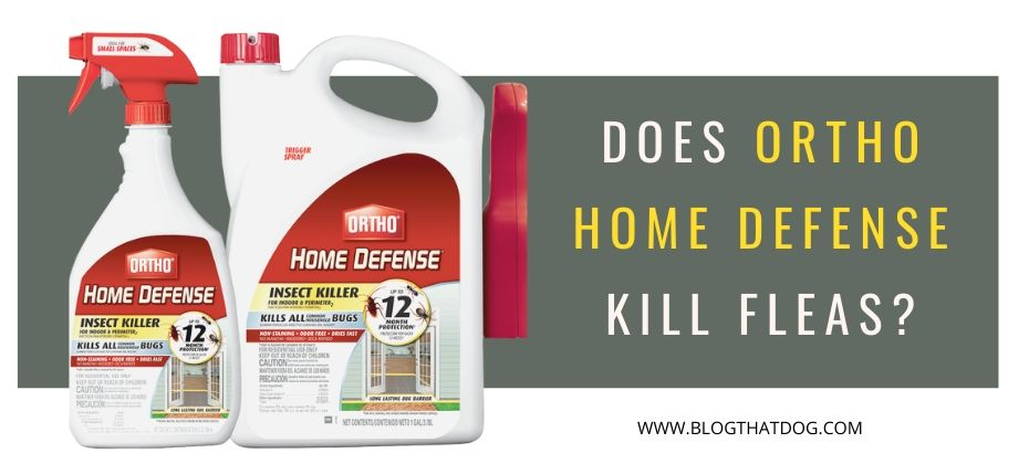 Does Ortho Home Defense Kill Fleas